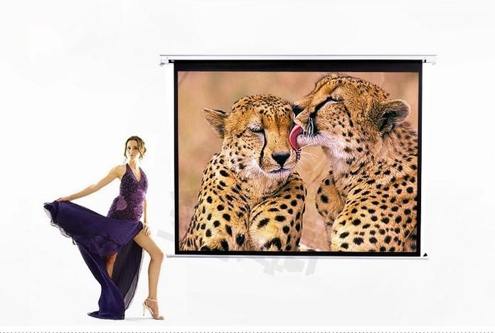 beamer leinwand kaufen schweiz leinwand bildschirm rolloleinwand leinwandtuch. Black Bedroom Furniture Sets. Home Design Ideas