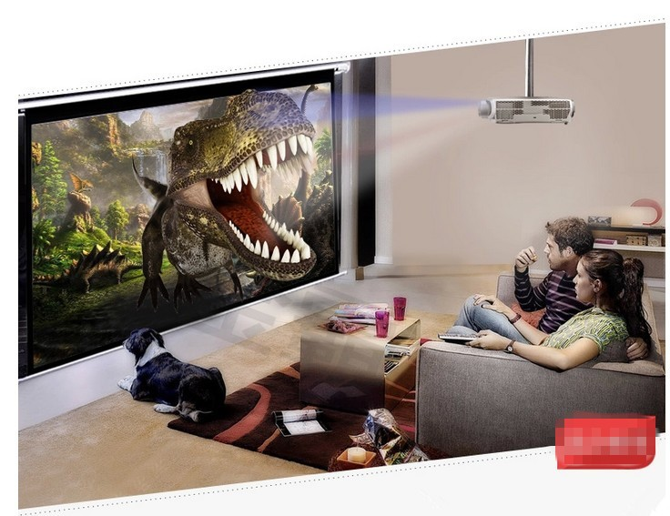 leinwand kaufen bildschirm rolloleinwand leinwandtuch. Black Bedroom Furniture Sets. Home Design Ideas