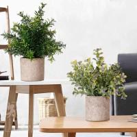 Echt Pflanzen Künstlich Eukalyptus Babysbreath Kleine mit Topf 3 Stück