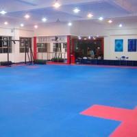 3 x Kampfsportmatt Bodenmatten, 105 x 105 x 2.5cm, Trainingsmatte