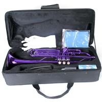 Bb Trompete mit Koffer, Mundstück , Zubehör, purpur für Anfänger