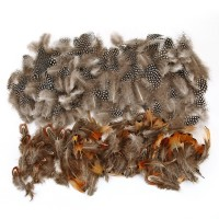 Naturfedern Federn Hühnerfeder 350 Stück DIY Deko Federn 3 Arten
