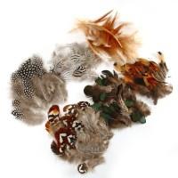 Naturfedern Federn Hühnerfeder 180 Stück DIY Deko Federn 6 Arten