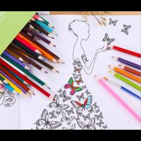 72er Buntstifte Farbstifte Aquarellstifte für Künstler Erwachsene Kinder