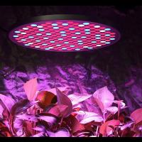 LED Pflanzenlampe 50W Pflanzenlicht Pflanzenleuchte mit Schalter