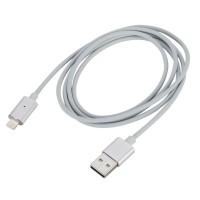 Magnetisches Lightning Ladekabel, 1.2m, für iPhone 7, iPad iPod Silber