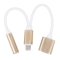 iPhone 7/8/X/XR/XS Adapter f. Laden Hören 2in1 Lightning Adapter 3,5 mm AUX Kopfhörer Ladekabel,gold