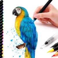 Pinselstifte Aquarellpinsel Lettering Stifte Brush Pen 20+1 Set